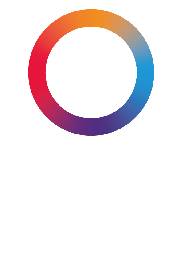 Bravecto Spot On Flea And Tick Treatment For Cats