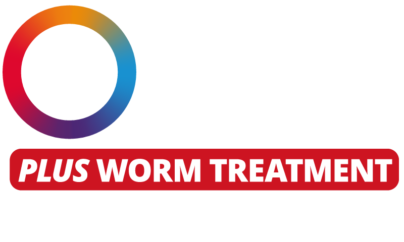 Bravecto 3 month Flea & Tick Protection