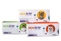 BRAVECTO  for Dogs Product